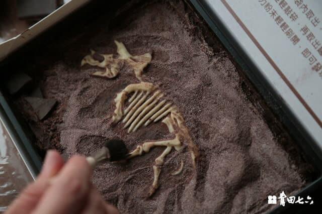 青田七六-恐龍化石巧克力2