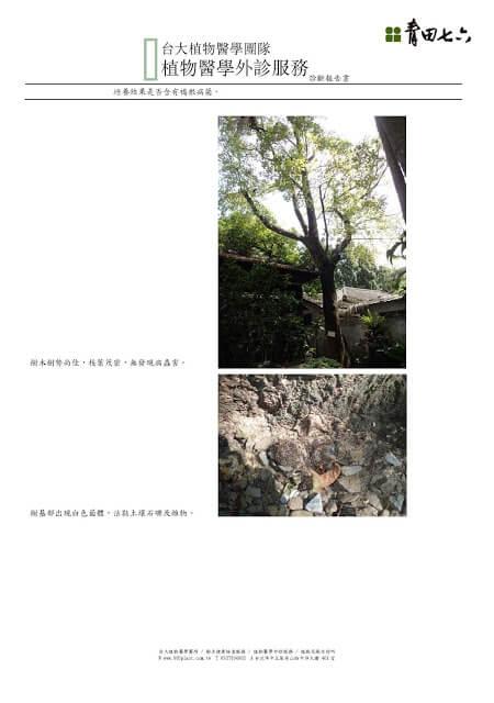植物醫學外診服務_結果報告書_青田七六0825_頁面_2-blog