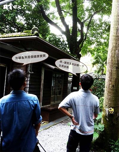 青田七六-維修紀錄-20120518(攀樹師檢查枝幹)