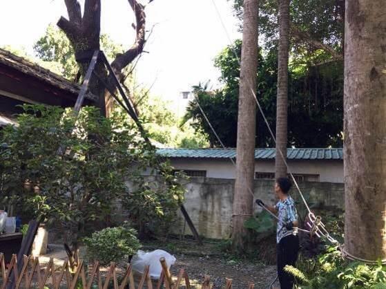 青田七六-維修紀錄-20171002(文化局第三次會勘)